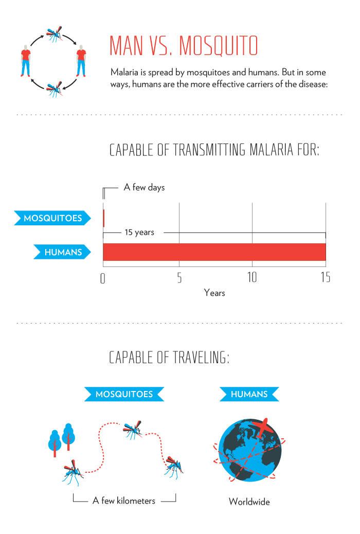 Infographic: How Malaria Travels Between Mosquito and Human - Mosquito Week | GatesNotes.com The Blog of Bill Gates