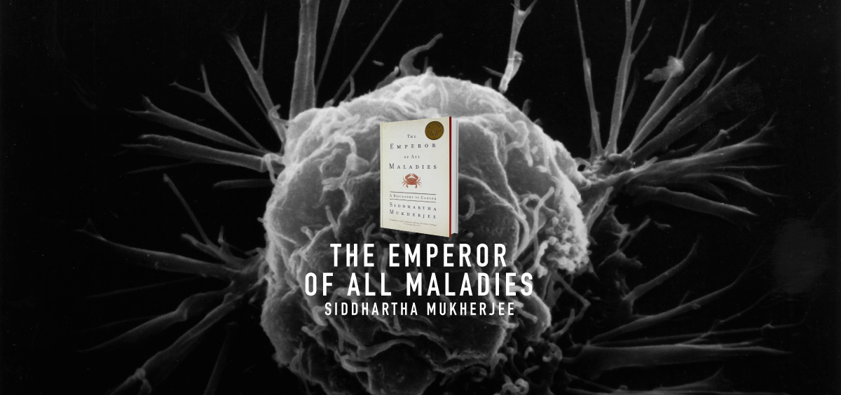essay about emperor about virtually all maladies